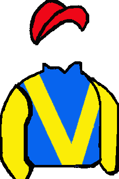 ROYAL BLUE, YELLOW 'V' & SLEEVES, RED CAP