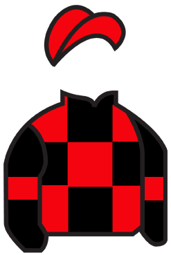 BLACK & RED SQUARES, BLACK SLEEVES, RED ARMBANDS & CAP