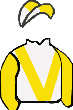WHITE, YELLOW 'V' & SLEEVES, WHITE & YELLOW QUARTERED CAP