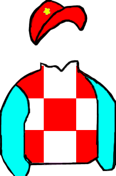RED & WHITE SQUARES, LIGHT BLUE SLEEVES, WHITE STAR ON RED CAP