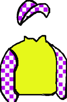 yellow, purple & white checked sleeves, purple & white checked cap